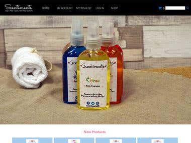 Magento 2 Shop Development