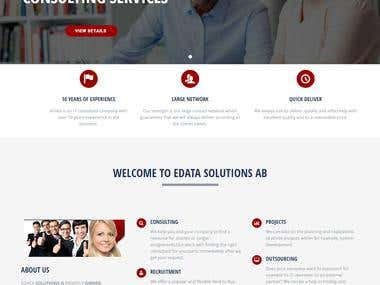 Consulting Firm Website