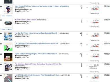 eBay Store Manger