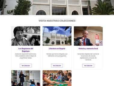 DIseño y programación Biblored Colombia