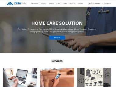 Mintextec (website Development)