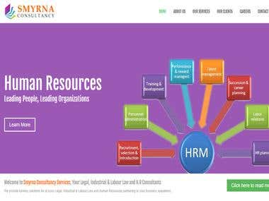 Smyrna Consultancy Website