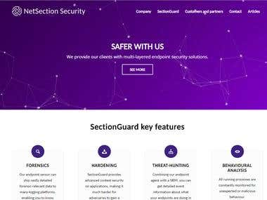 Website for Web Security company