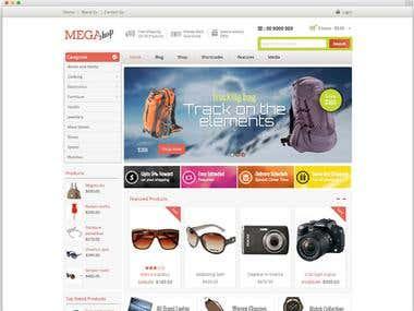 E commerce Theme Development