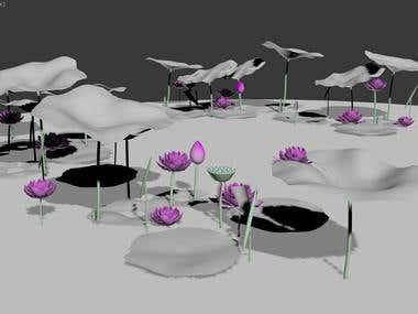 Lotus project - under construction