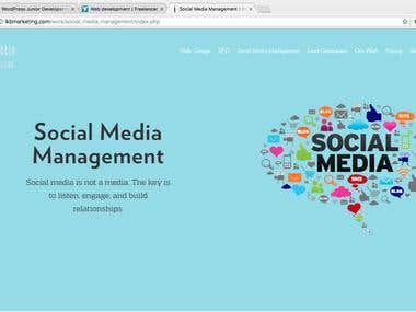 STYLISH WEBSITE FOR IKB MARKETING USA