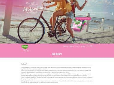 Molped Website Project