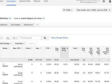 Adwords Campaign Keywords Quality Score