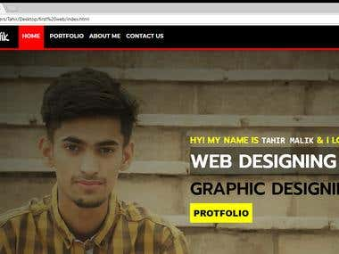 Website Designing & Developer