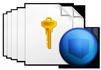 VB.NET License
