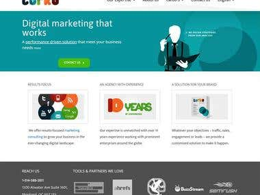 Website for internet marketer