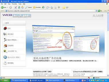www.webprofits.cn_transations_project