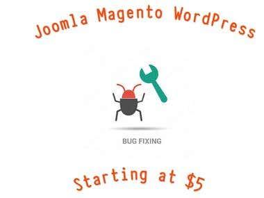 Bug Fixing WordPress Joomla Magento