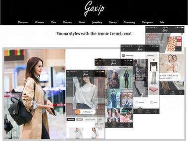 Social Fashion and Shopping
