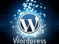 Wordpress and Custom cms