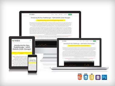 Landing / Sales Page Design & Development