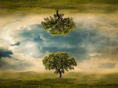 Photoshop Design: Tree of two worlds