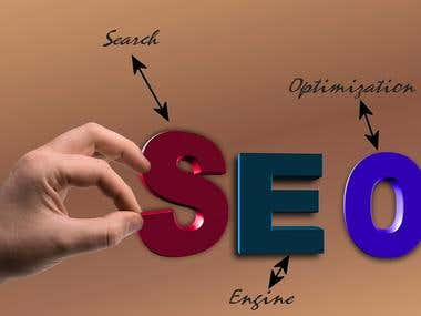 We Do SEO Article Writing in 24 Hours