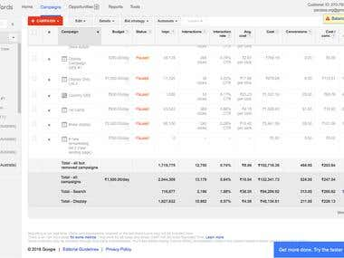 494 Conversions in Google Adwords