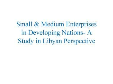 Small and Medium Enterprises in Developing Nations