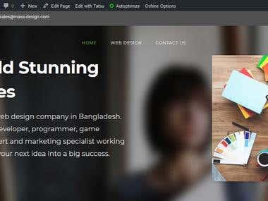 Web Design For MassDesign Ltd.