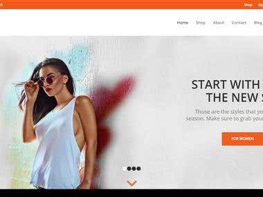 Ecommerce,wordpress website