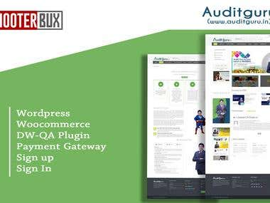 Auditguru - Website