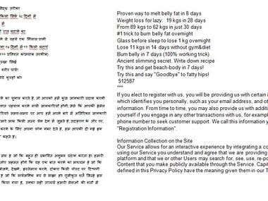 TRANSLATION ENGLISH TO HINDI