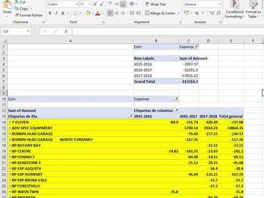 I can do Pivot Tables