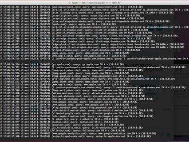 Caching DNS Server