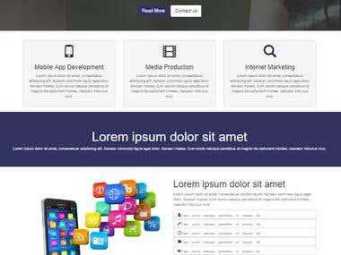 Business Website Exemple