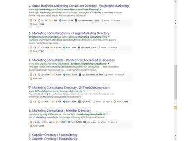 SEO for Consultants directory Website