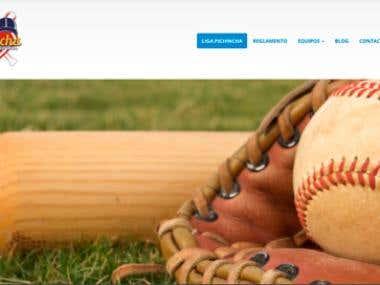 Liga Softbol ichincha