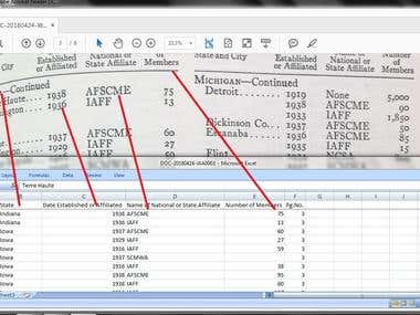 PDF to Excel Data Entry