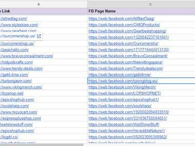 E-commerce FB Pages Research