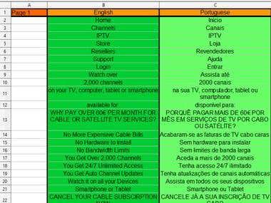 Website Translation in Excel