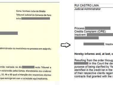 Legal Document Translation (PDF to Word)