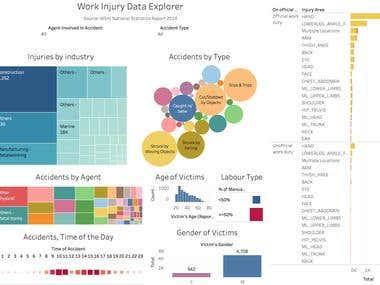 Work Injury Visualization
