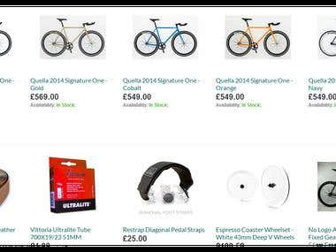 Google Shopping and Search Campaigns for eCommerce project