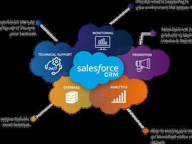 Salesforce CRM Implementation