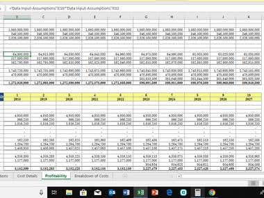 Detailed projected Income statement for a startup company