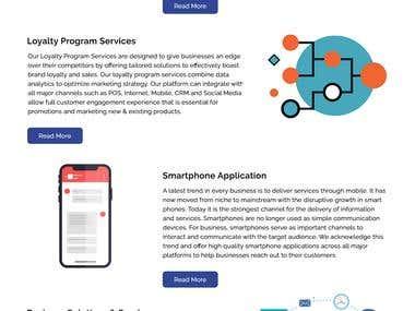 Wemsol Website Development