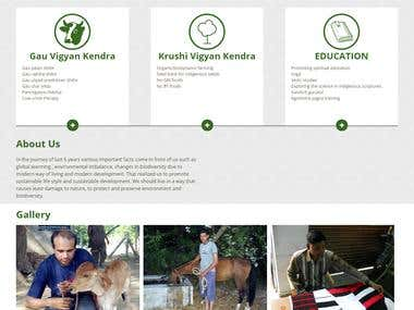 Design And Development A Wesbite For NGO