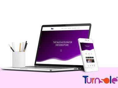i1too Website Designing and Development