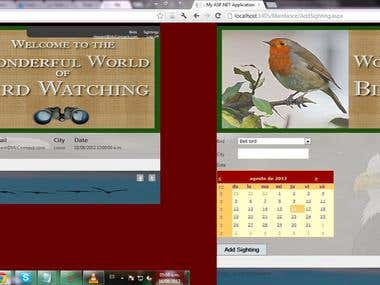 Development of Bird Watch website.
