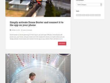 Wordpress Website with customization
