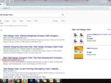 SEO Ranking Result