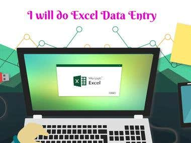 I will do Excel Data Entry