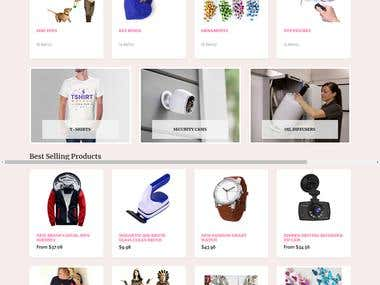Shopify Store Creation 01
