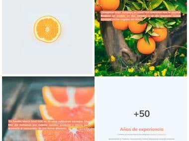 Inicio Taronches Valensianes | Naranjas de Valencia